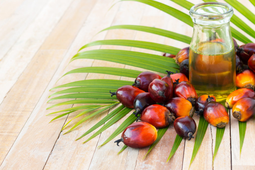 Fusionex-MOSTA Joint Event – The Future of Palm Oil Industry Through IR 4.0
